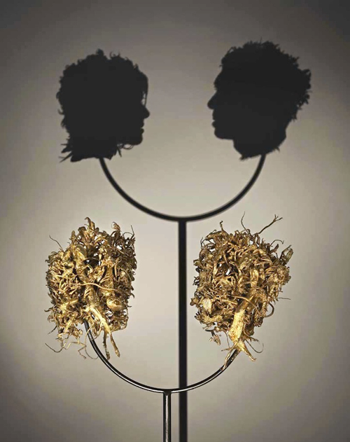 Two shadow heads facing each others