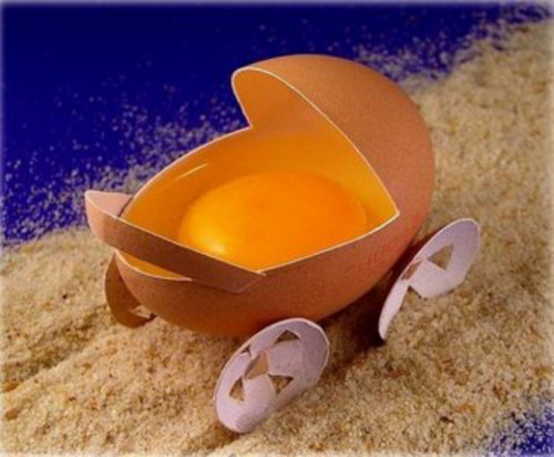 Egg carriage