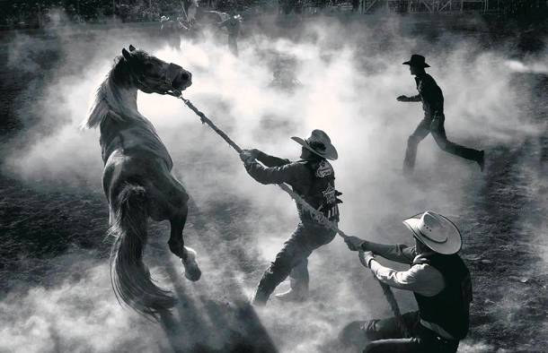 Annual Bucking Horse Sale in Miles City, Montana