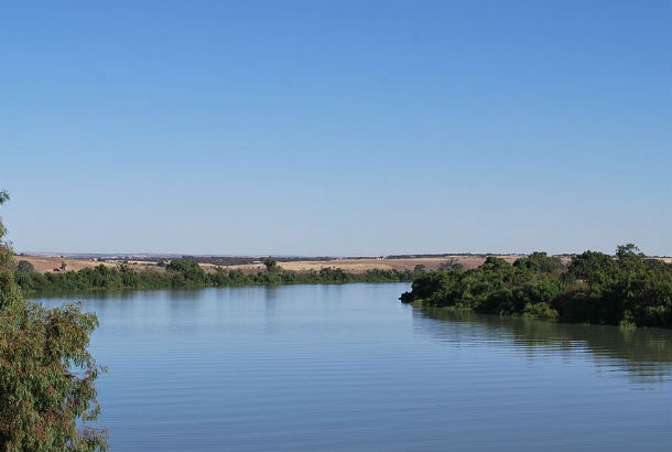 The Murray River from the middle of the water with trees on either side
