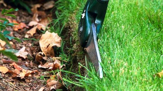 Trim the edges of the lawn