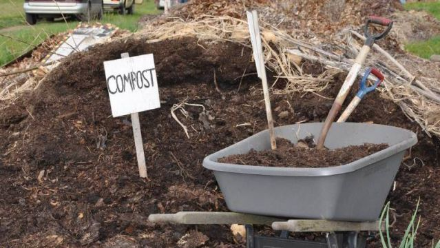 Make organic compost for your garden