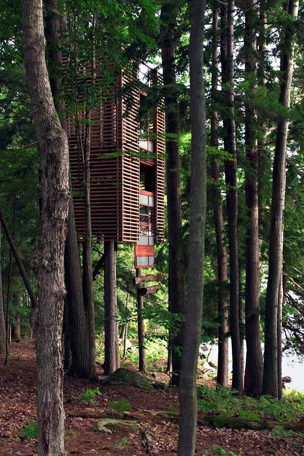 elevated treehouse