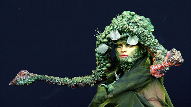 World Body Painting Competition