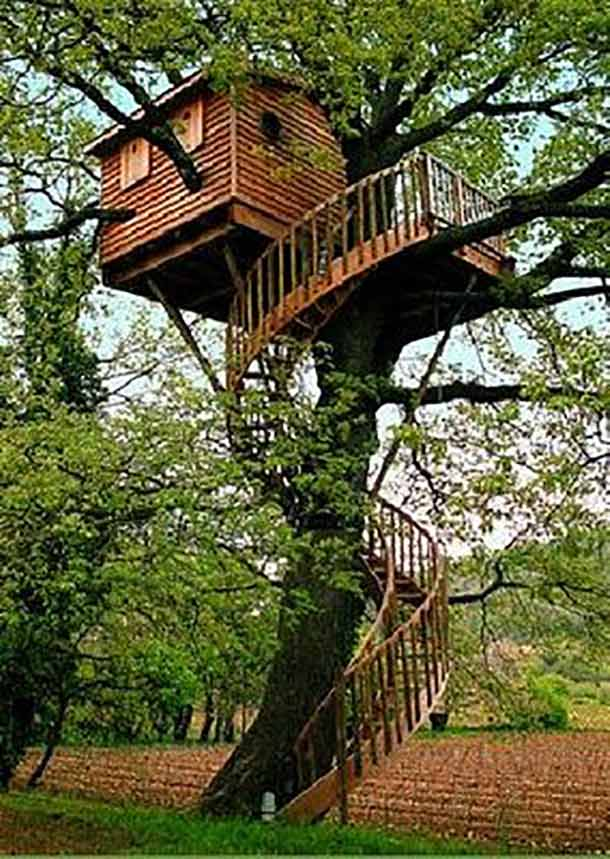 spiral tree house