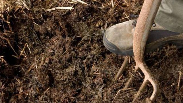 Add three inches of mulch to your flower bed