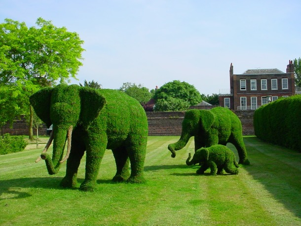 25 Impressive Topiary Sculptures You'll Want In Your Landscape