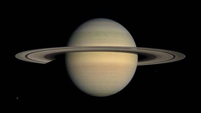 The iciness of Saturn's rings
