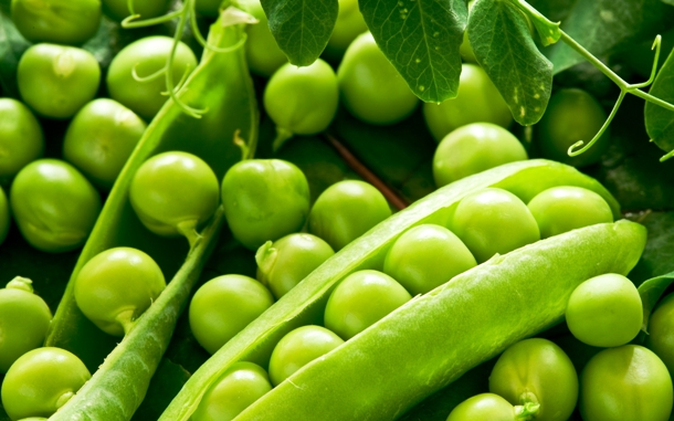 www.edenbrothers.com Food_Differring_meal_Green_peas_034159_
