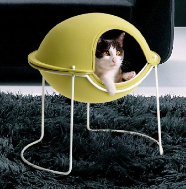 www.thehouseface.com cat-view-Awesome-Pet-House-for-Cats-and-Small-Dogs-Called-Cool-Pot-by-Hepper-580x588