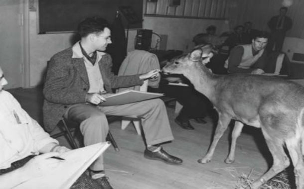 While filming Snow White and Bambi, Walt Disney kept a menagerie of animals on the studio lot as live reference for the animators. Now that's a smart boss.
