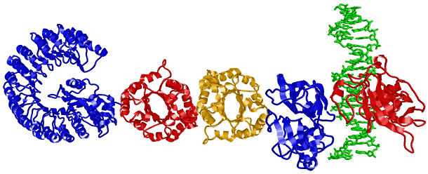 google Doodle_proteins