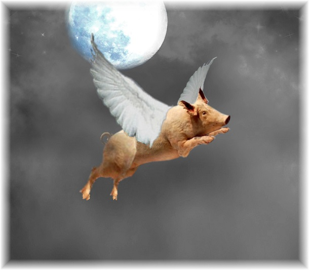 pig flying by blue moon