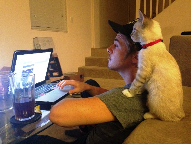 animals who want to work with you