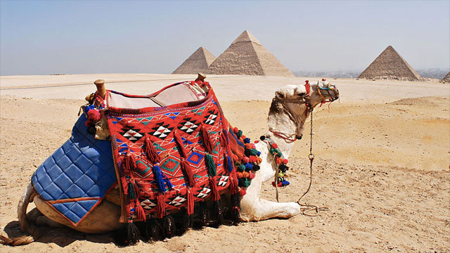 Riding a camel with the Great Pyramid of Giza in the background