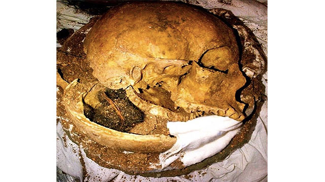 This human skull found inside a clay pot at Fort Lauderdale International Airport. The traveler had just purchased the pot and had no idea there were human remains inside.
