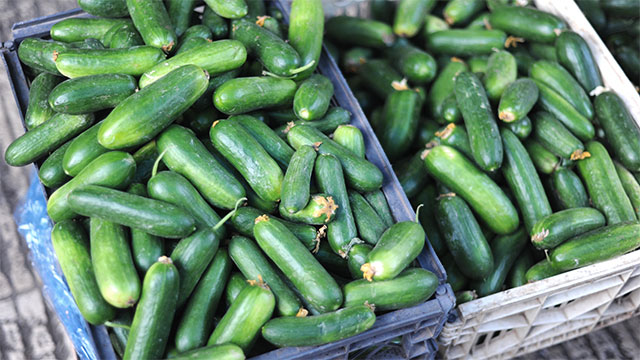 Cucumbers are actually fruits