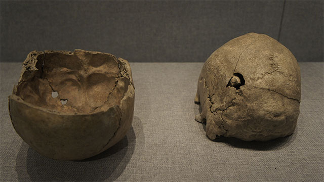 During the Ice Age, Britons used human skulls as cups