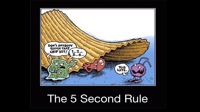 Is the 5 second rule true?