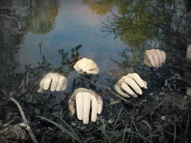 Hands in pond