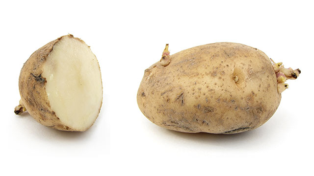 To prevent your windows from fogging up, cut a potato in half, rub down the inside of your windows, and then leave them to dry