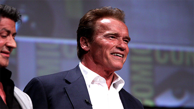 In Terminator 2, Arnold Schwarzenegger was paid more than $20,000 for every word he spoke
