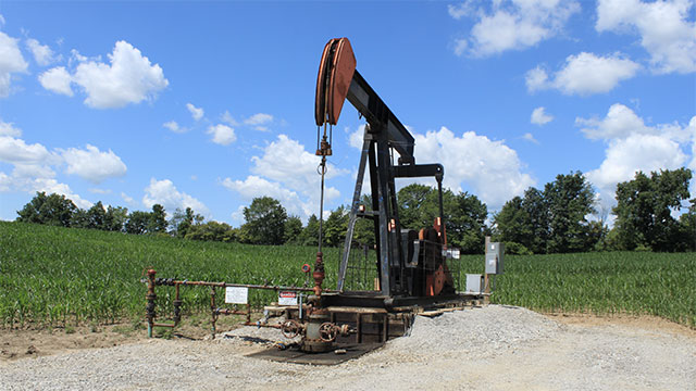 Beverly Hills High School in California has 19 oil wells on its campus. They earn the school about 300,000 USD per year