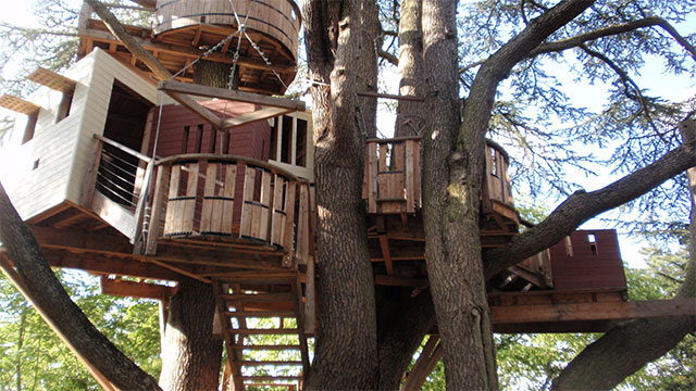 Treehotel is a hotel in Sweden that has all it's rooms exactly where you might suspect....in the trees!