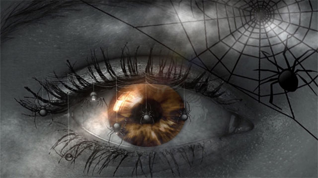 Blind people have more night mares than people with regular vision...up to 4 times more!