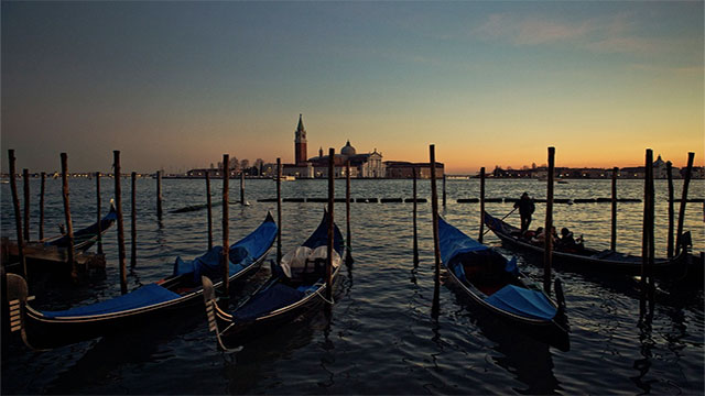 Over 1000 years ago, the islands of Venice were built on trees, but because the trees are submerged they do not rot. In fact, minerals in the water have been gradually calcifying them into stone