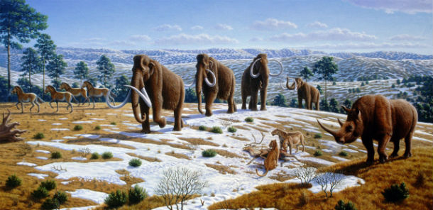 The frequency and extent of ice ages