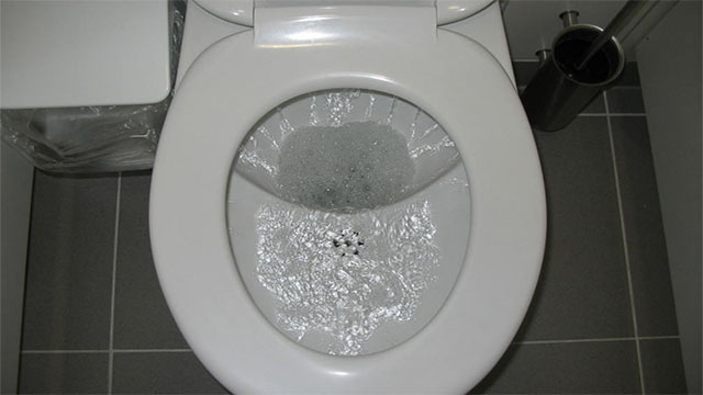 In Britain, nearly 100,000 cell phones are dropped down toilets every year