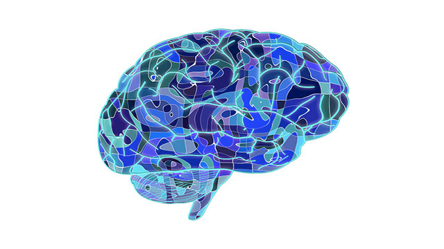 Although your brain interprets pain from the rest of your body, it does not actually feel pain by itself. This is why open brain surgery can be performed while the person the person is awake (typically with local anesthesia)