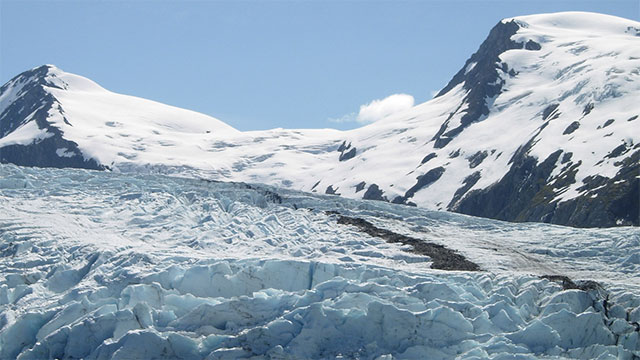 There are more glaciers and ice fields in Alaska than in the rest of the inhabited world put together. In other words, more than half of the habitable world's glaciers can be found in Alaska (this obviously doesn't include Antarctica).