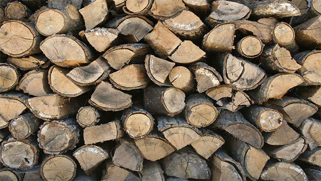 Collect all the wood you think you'll need for the night in a pile. Then make the pile 3 times bigger.