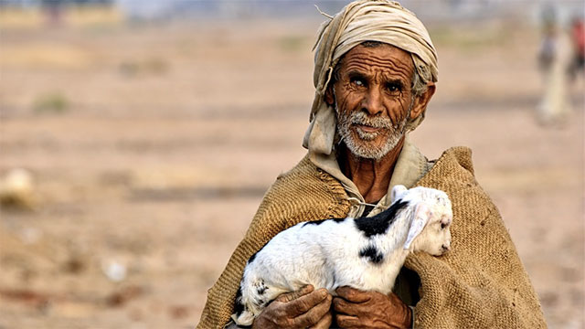 In spite of receiving only about 8 cm of rainfall every year, the Sahara is home to about 2 million people.
