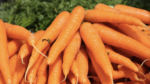 Carrots don't actually improve your eyesight (at least not any more than any other vegetable). This was a lie propagated by the British during World War II because they didn't want the Germans to find out that British pilots were using radar. Instead, they released a public announcement claiming that the reason for their pilot's incredible accuracy was the high number of carrots that they consumed. It was silly, but people believed it.