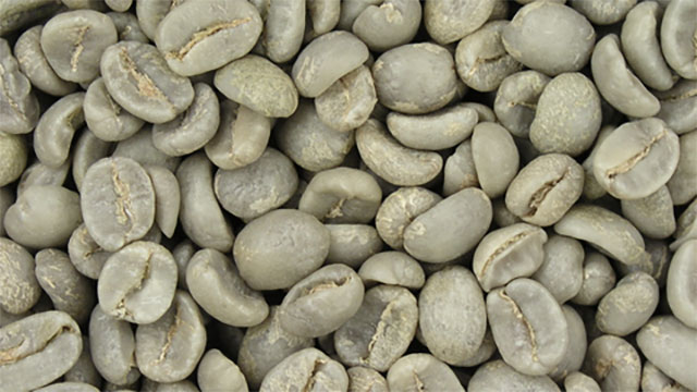 During the 1980s, scientists showed that an enzyme in green coffee beans could turn any blood type into type O, the universal donor.