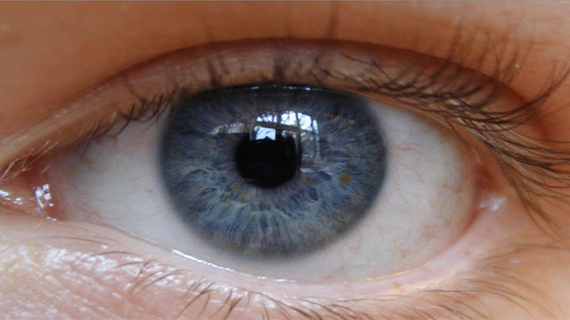 Blue eyed people share a common ancestor who lived about 10,000 years ago around the Black Sea