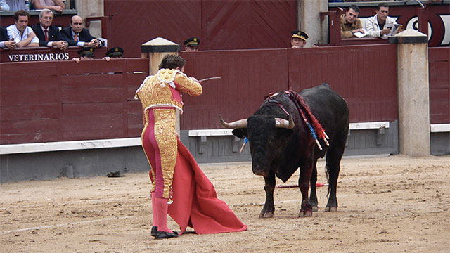 The matador's cape doesn't need to be red because the bull is color blind. It is said that the cape is red in order to hide the blood splatter from the audience (when the bull is finally killed)