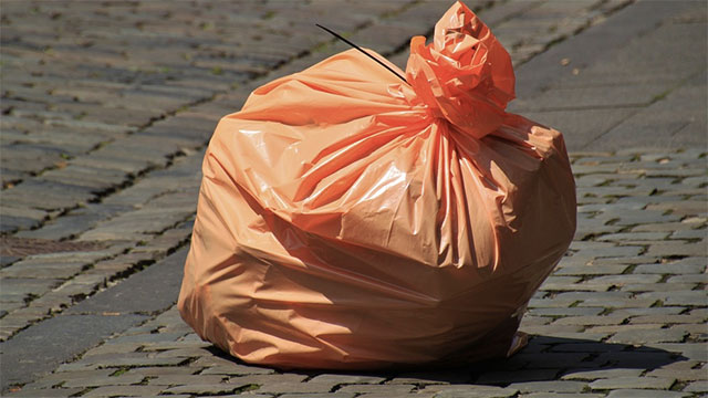 Four out of five bags in the United States are plastic