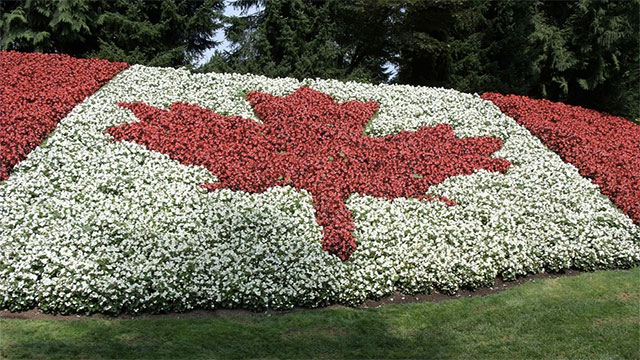 Canada Politely Asks For Independence