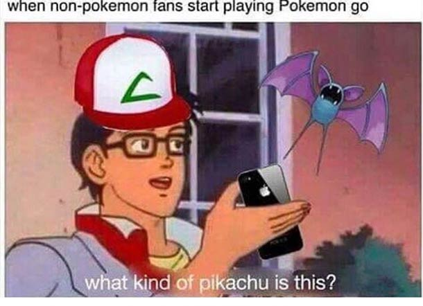 What kind of Pikachu is it