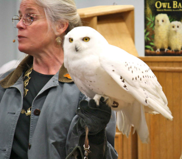 white owl with woman