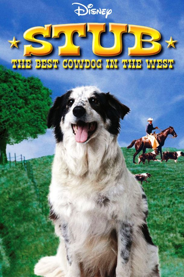 Stub: The Best Cow Dog In The West