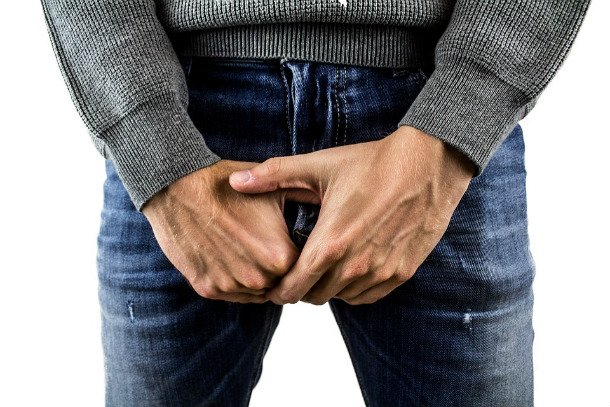 Penis Testicles Testicular Cancer