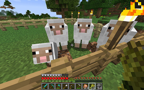25 Facts About Minecraft You Might Not Know
