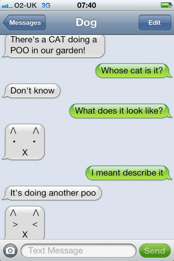 dog text cat going poo