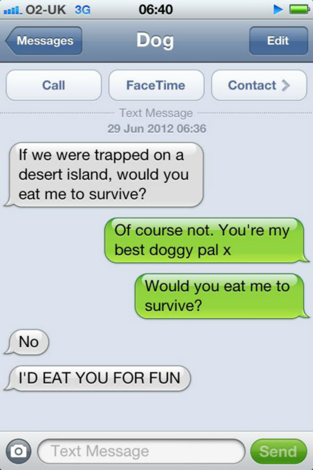 dog text eat for fun
