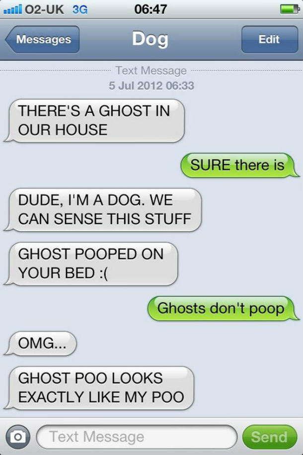 dog text ghost poo